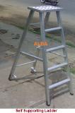 Foto de ALBA Aluminium Ladders