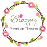 Blooms Only - Flower Delivery in Pune Pune