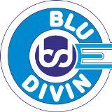 Blue Divine Event Management Pimpri-chinchwad