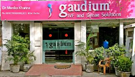 Gaudium Infertility Treatment in Delhi New Delhi