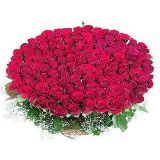 Fotos de My Flowers -Send Flowers to Latur, Online Cake Delivery to Latur