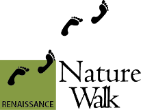 Nature Walk Bangalore