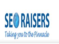 SEORAISERS : Website SEO Services Mohali
