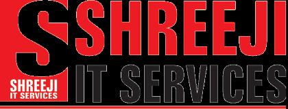 Shreeji IT Services Vadodara