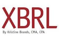 XBRL Data Conversion Services New Delhi